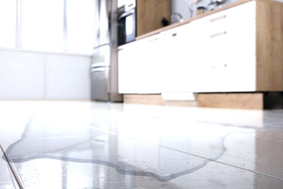 What to do after Water Damage in NYC Apartment